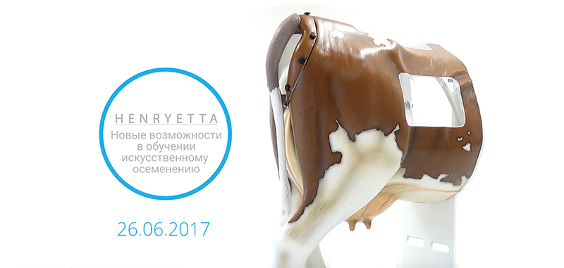henryetta-offline-course-2017-vetlikar