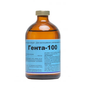 Гента 100