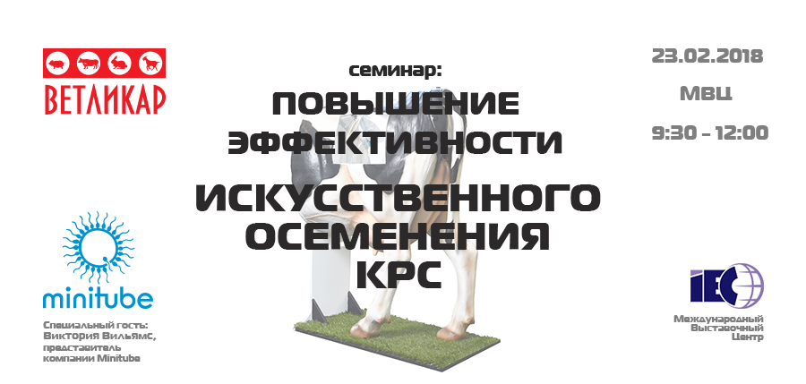 seminar-povyshenie-effektivnosti-io-krs-mvc-afisha-vetlikar