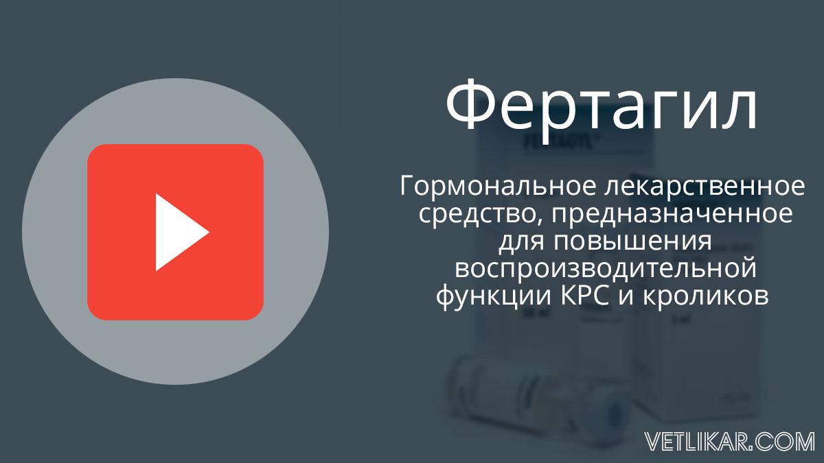 Фертагил видеоинструкция